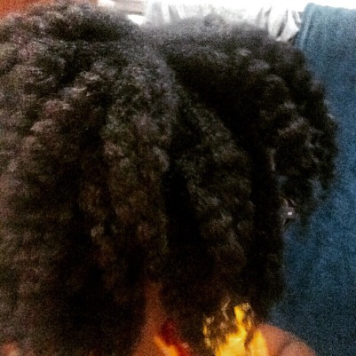 shaggy, wet braid out, hair not dry